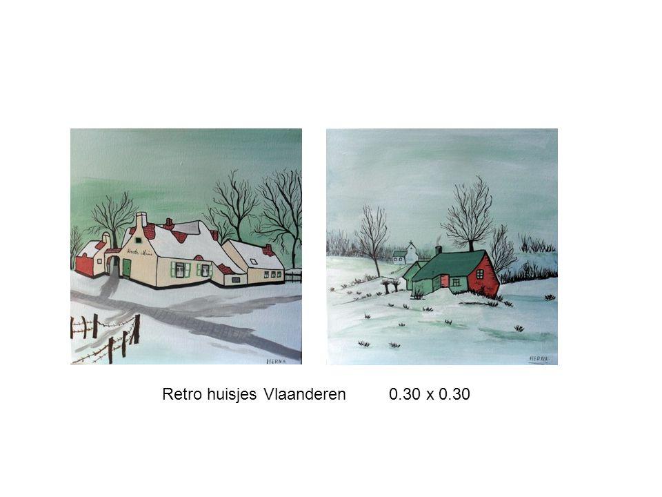 Retro huisjes Vlaanderen 0.30 x 0.30