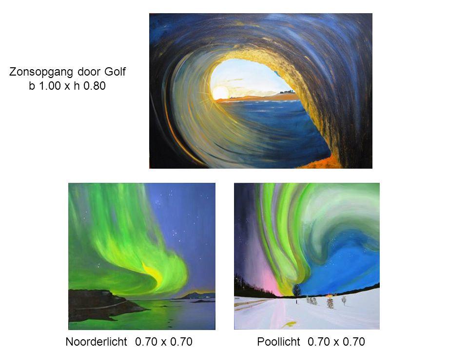 Zonsopgang door Golf b 1.00 x h 0.80 Noorderlicht 0.70 x 0.70 Poollicht 0.70 x 0.70