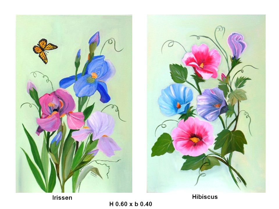 Irissen Hibiscus H 0.60 x b 0.40