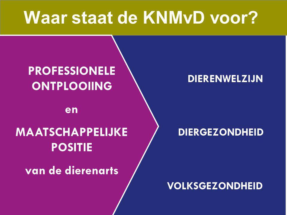 Waar staat de KNMvD voor