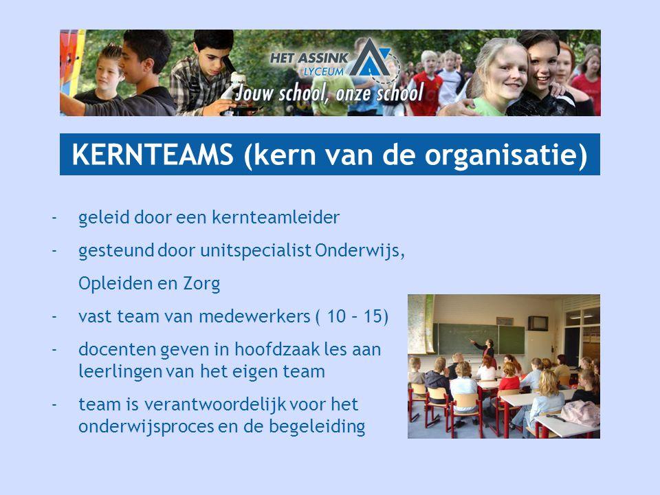 KERNTEAMS (kern van de organisatie)