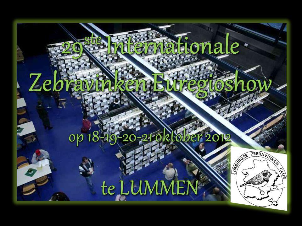 29ste Internationale Zebravinken Euregioshow op 18-19-20-21 oktober 2012 te LUMMEN
