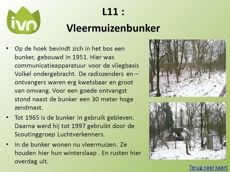 L11 : Vleermuizenbunker.
