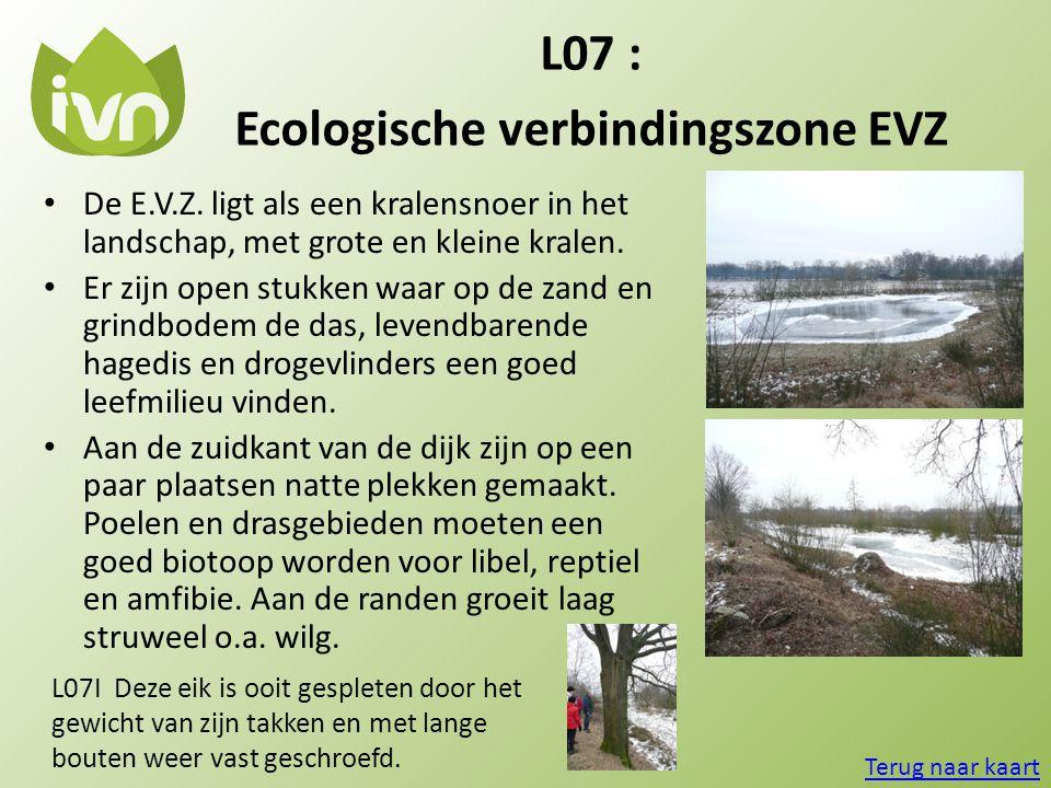 Ecologische verbindingszone EVZ