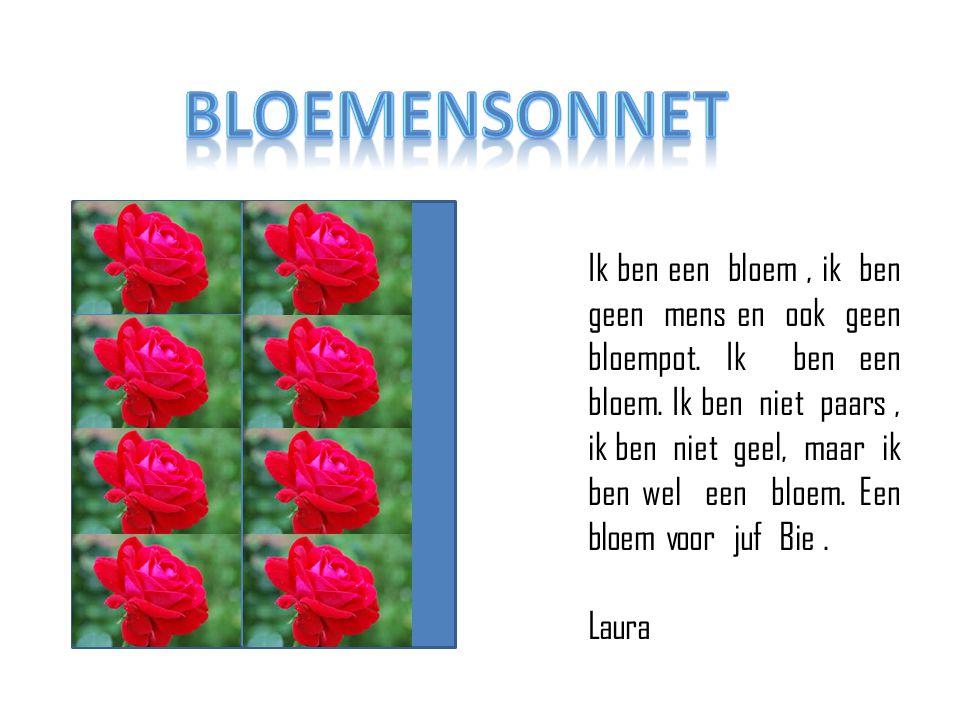 bloemensonnet