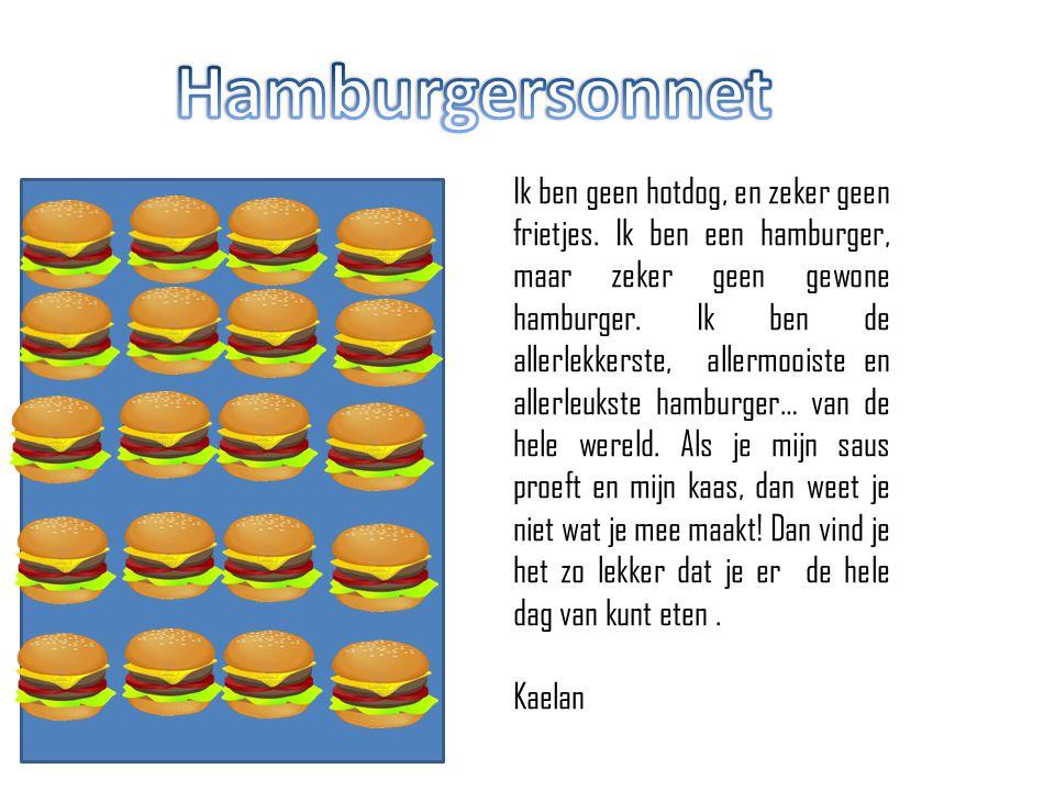 Hamburgersonnet