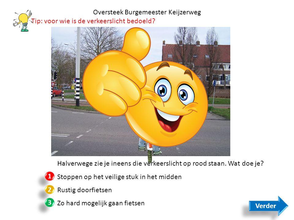 Oversteek Burgemeester Keijzerweg
