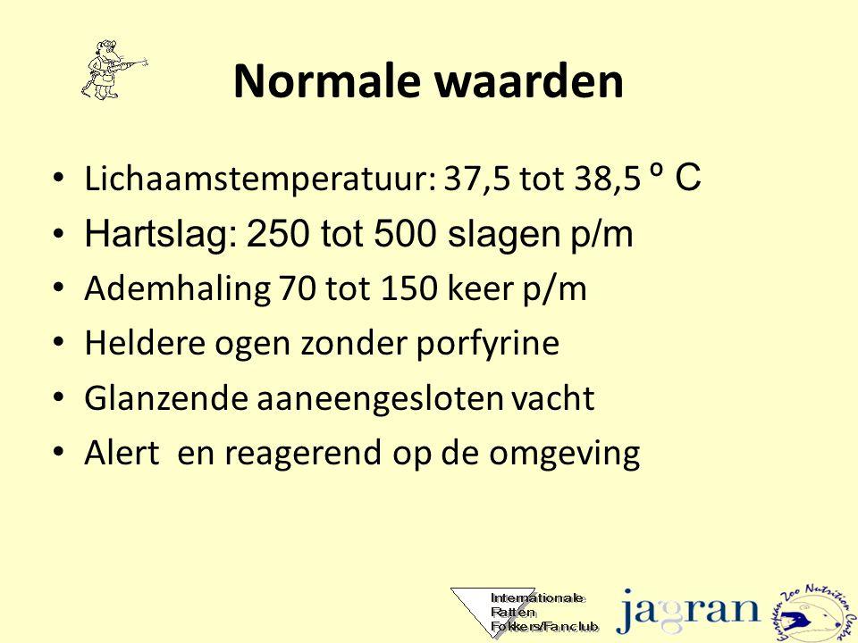 Normale waarden Lichaamstemperatuur: 37,5 tot 38,5 º C