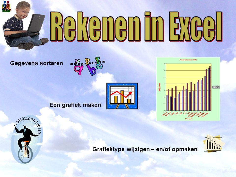 Rekenen in Excel Gegevens sorteren Een grafiek maken