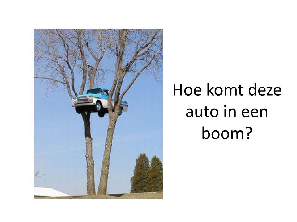 Hoe komt deze auto in een boom