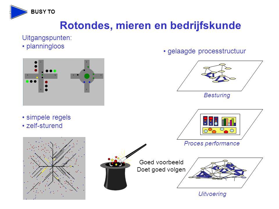 Rotondes, mieren en bedrijfskunde