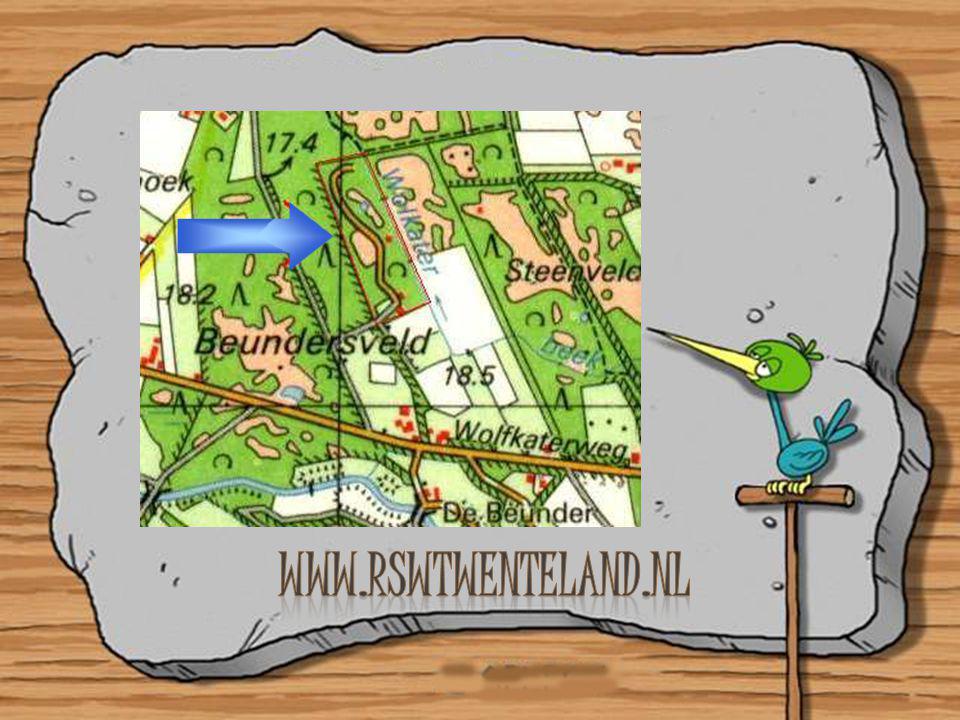 www.rswtwenteland.nl