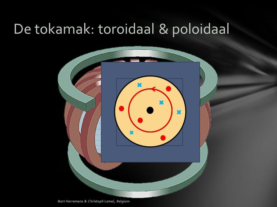 De tokamak: toroidaal & poloidaal