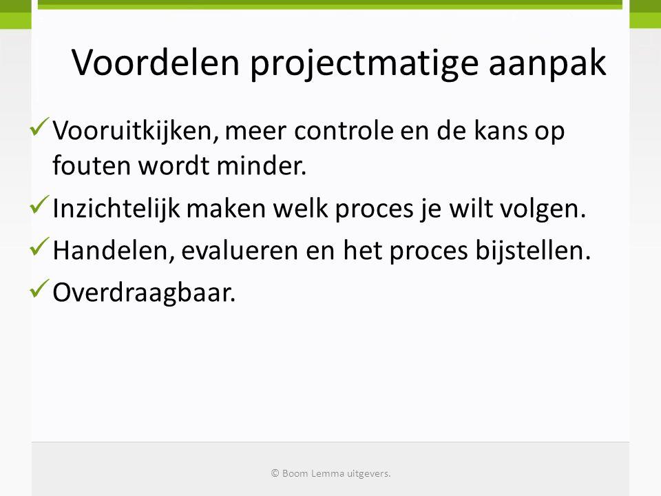 Voordelen projectmatige aanpak