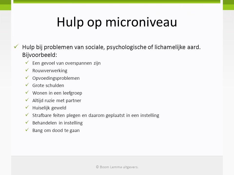 Hulp op microniveau Hulp bij problemen van sociale, psychologische of lichamelijke aard. Bijvoorbeeld: