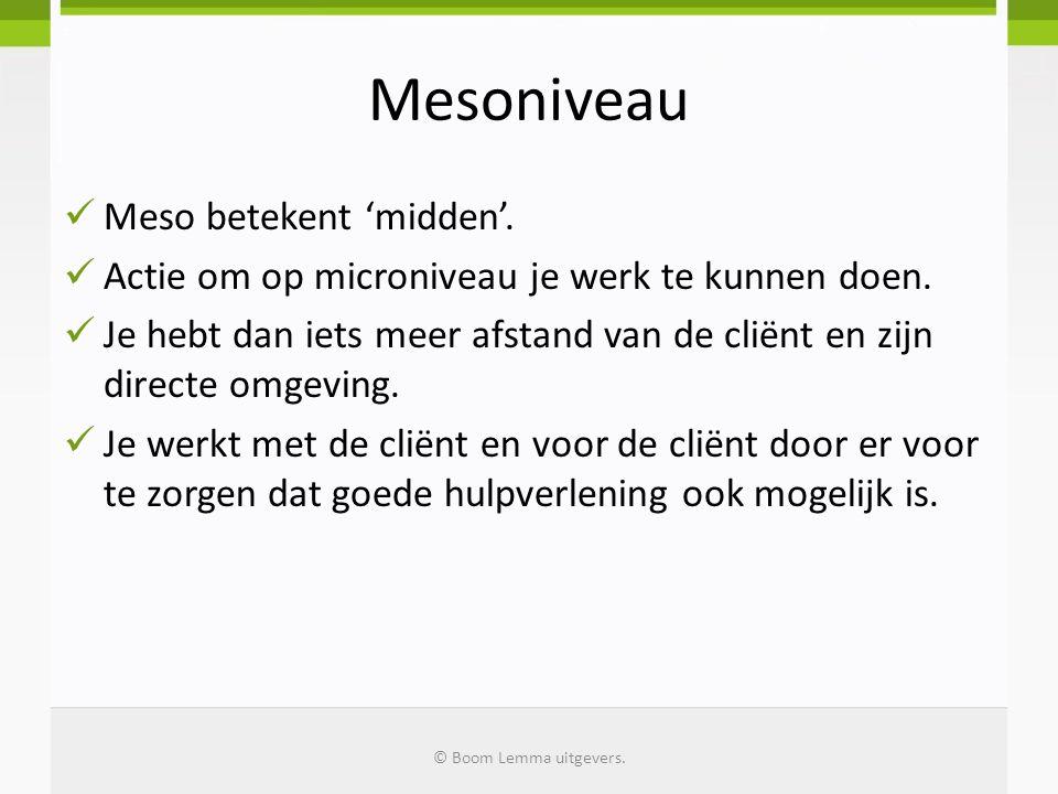 Mesoniveau Meso betekent 'midden'.