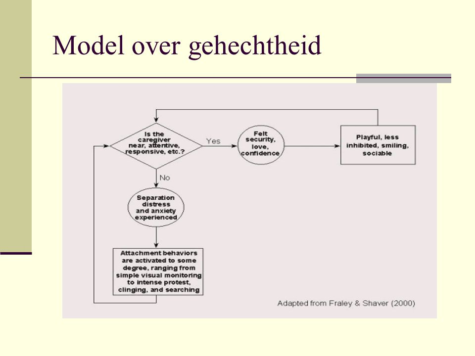 Model over gehechtheid