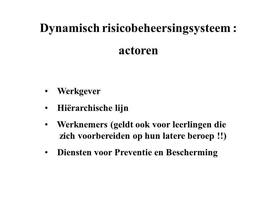 Dynamisch risicobeheersingsysteem :