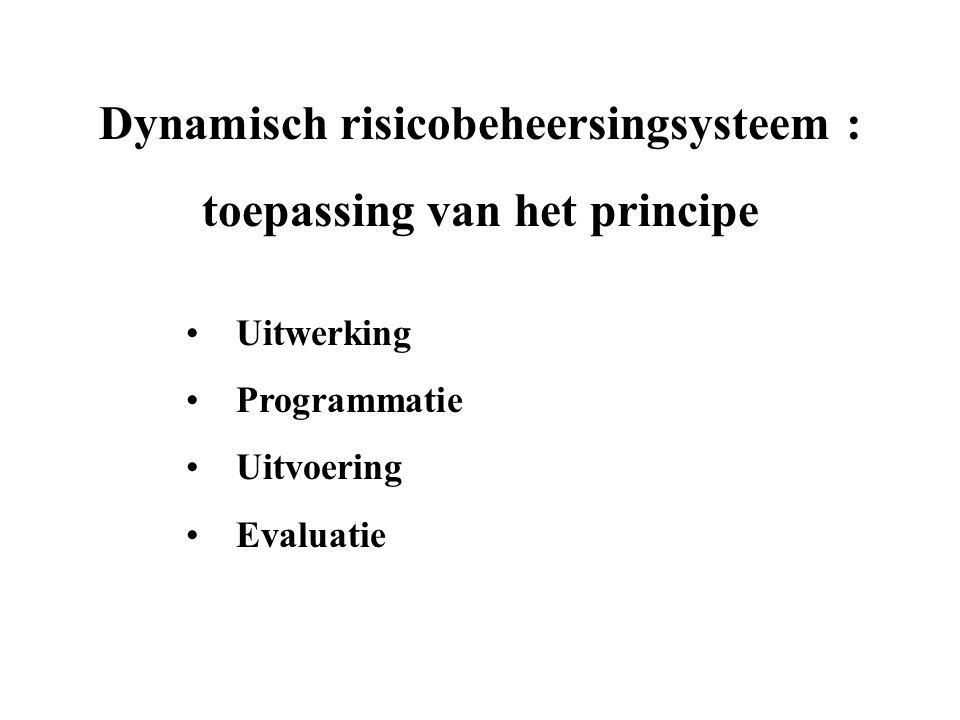 Dynamisch risicobeheersingsysteem : toepassing van het principe