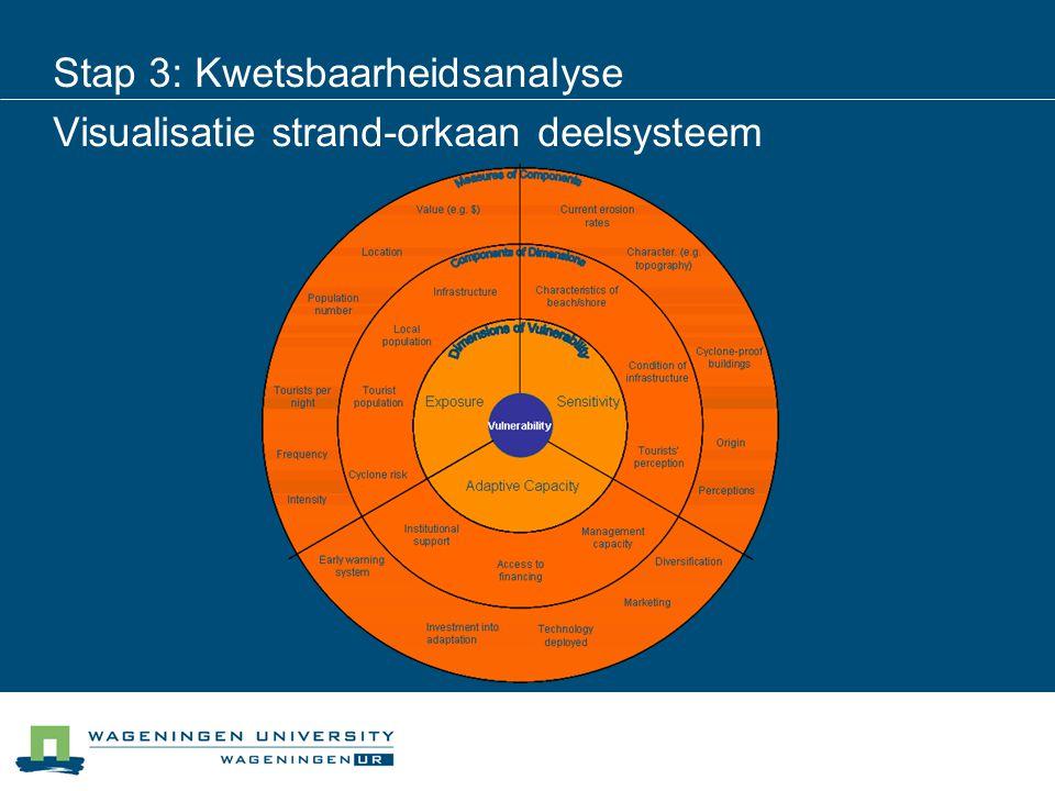 Stap 3: Kwetsbaarheidsanalyse Visualisatie strand-orkaan deelsysteem