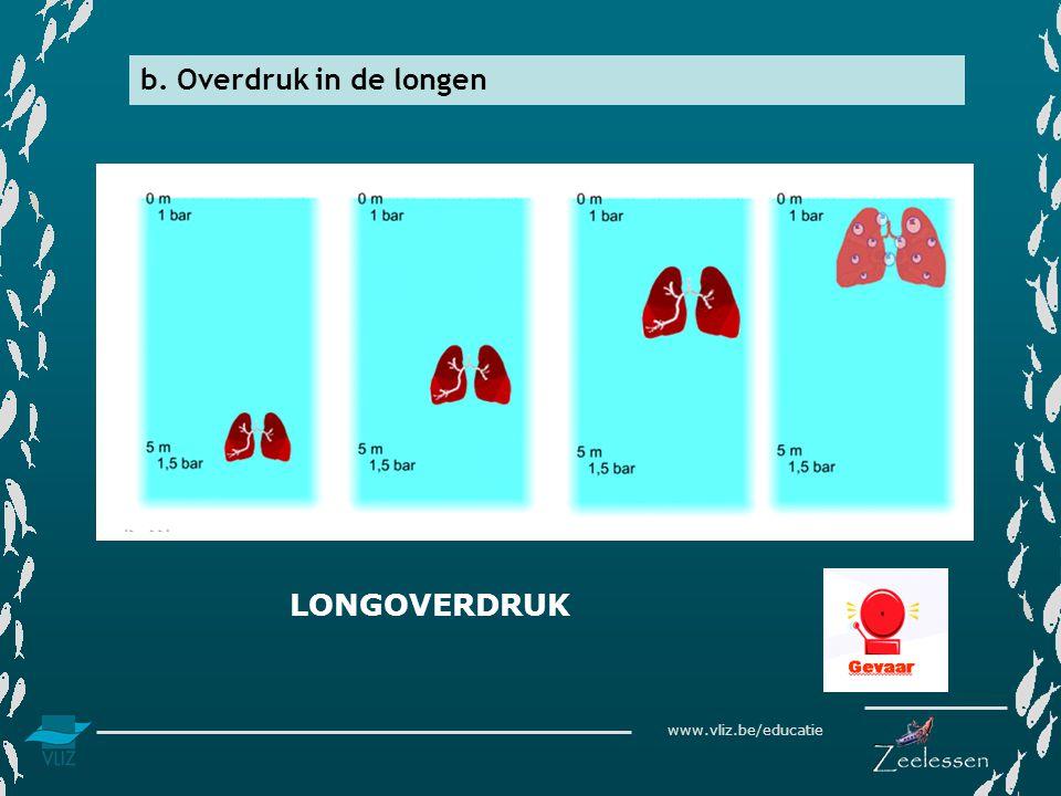 b. Overdruk in de longen LONGOVERDRUK