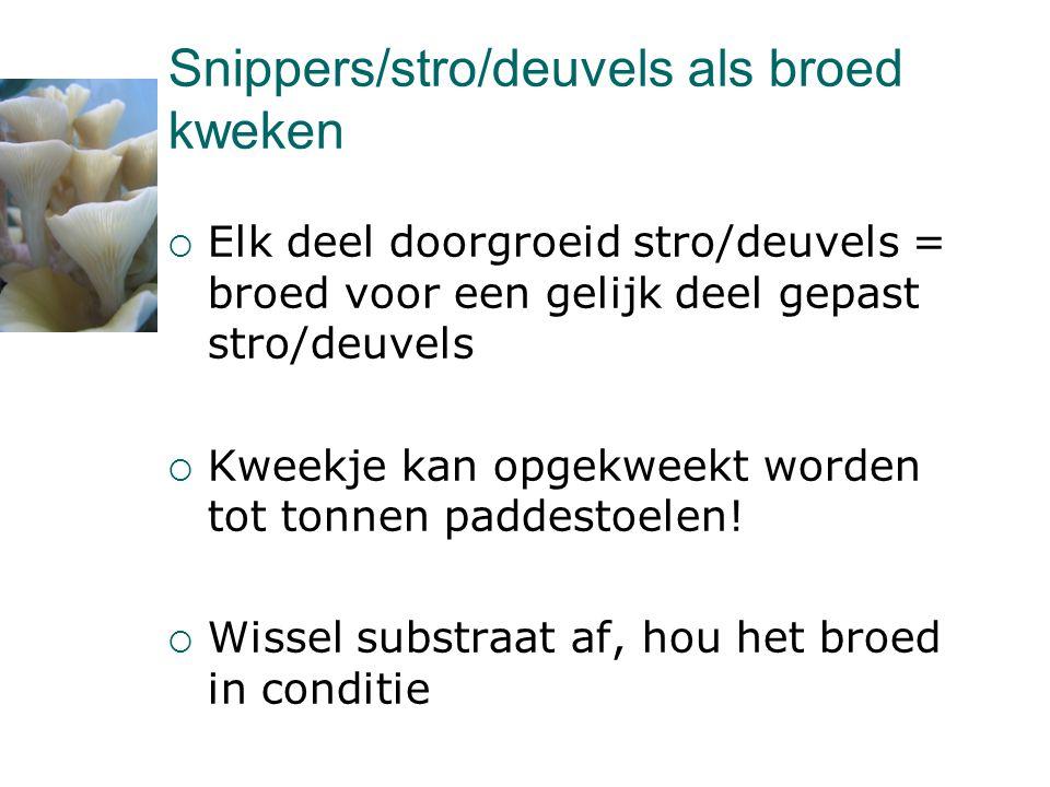 Snippers/stro/deuvels als broed kweken
