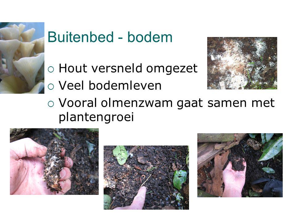 Buitenbed - bodem Hout versneld omgezet Veel bodemleven