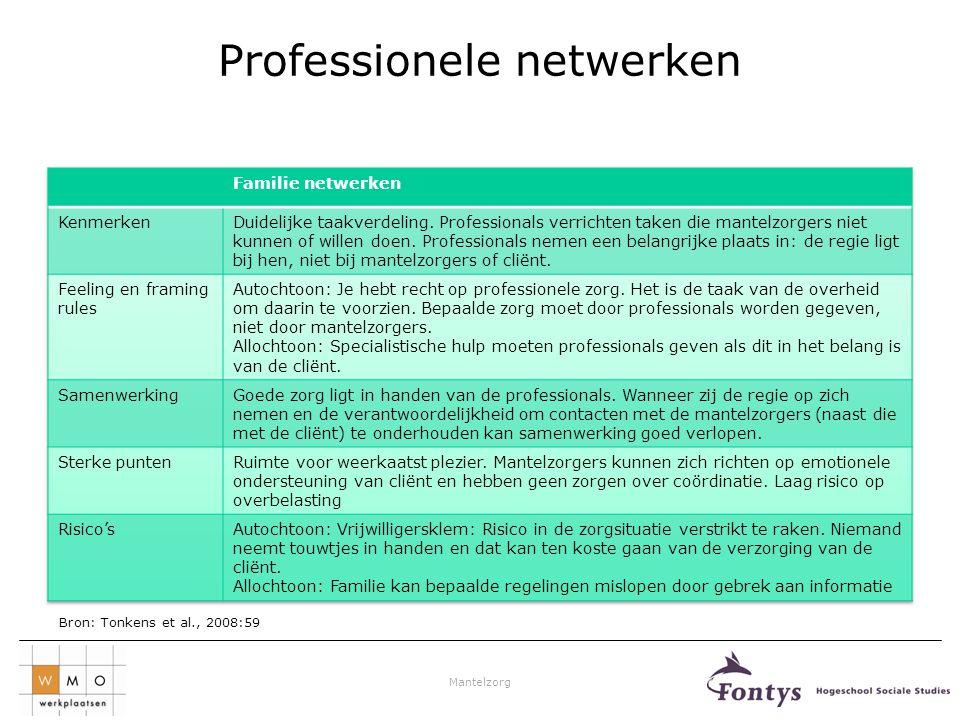Professionele netwerken