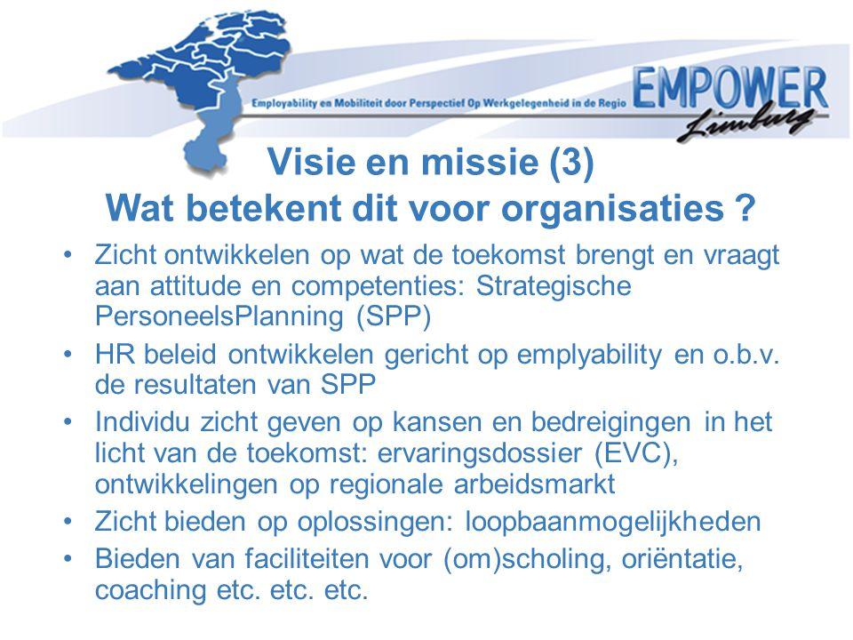 Visie en missie (3) Wat betekent dit voor organisaties