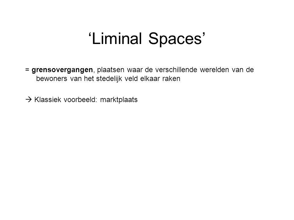 'Liminal Spaces' = grensovergangen, plaatsen waar de verschillende werelden van de bewoners van het stedelijk veld elkaar raken.