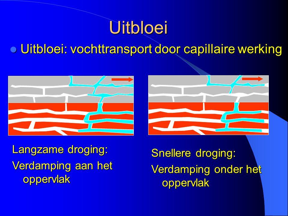 Uitbloei Uitbloei: vochttransport door capillaire werking