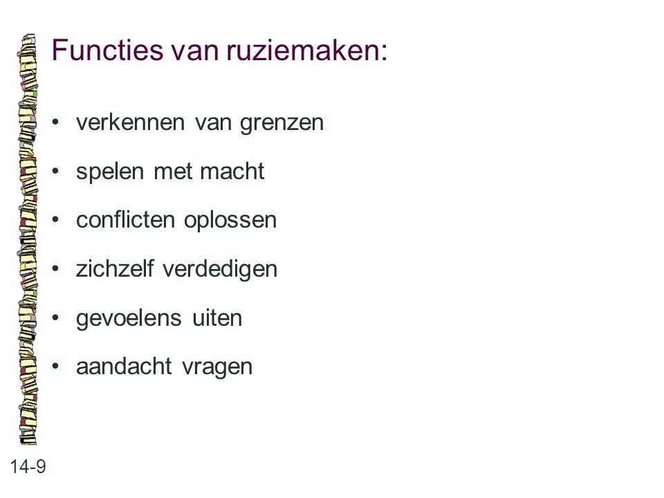Functies van ruziemaken: