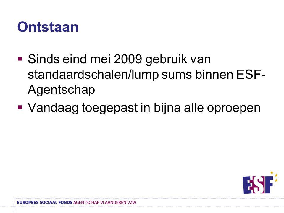 Ontstaan Sinds eind mei 2009 gebruik van standaardschalen/lump sums binnen ESF-Agentschap.