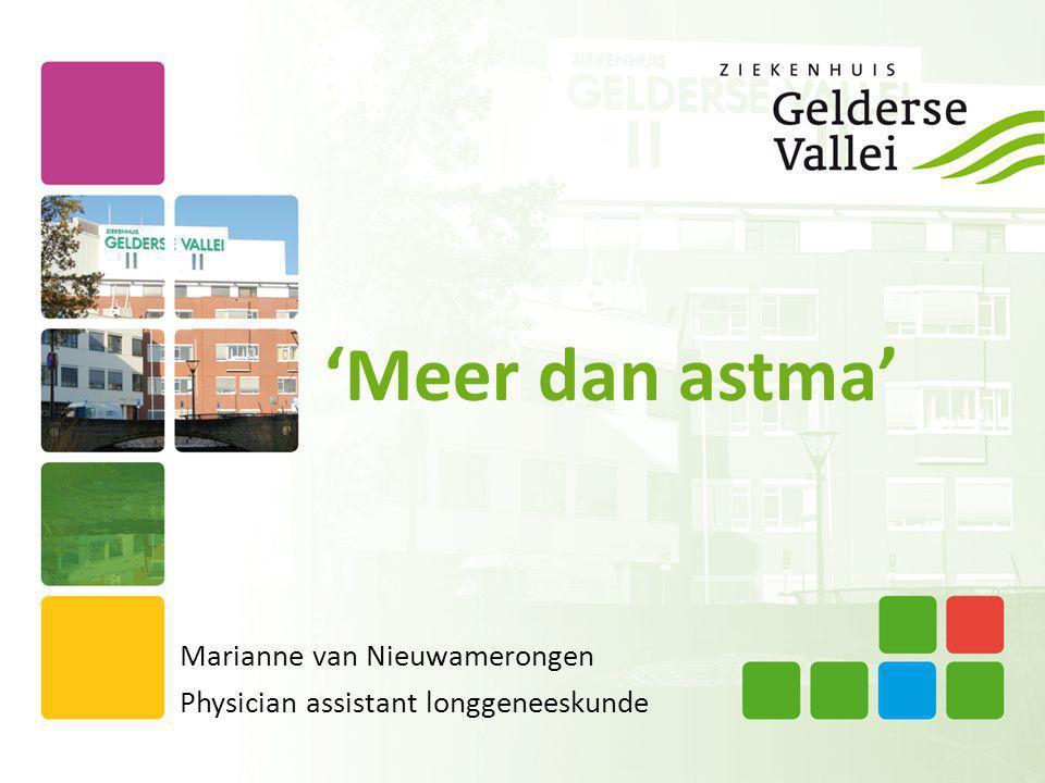 Marianne van Nieuwamerongen Physician assistant longgeneeskunde