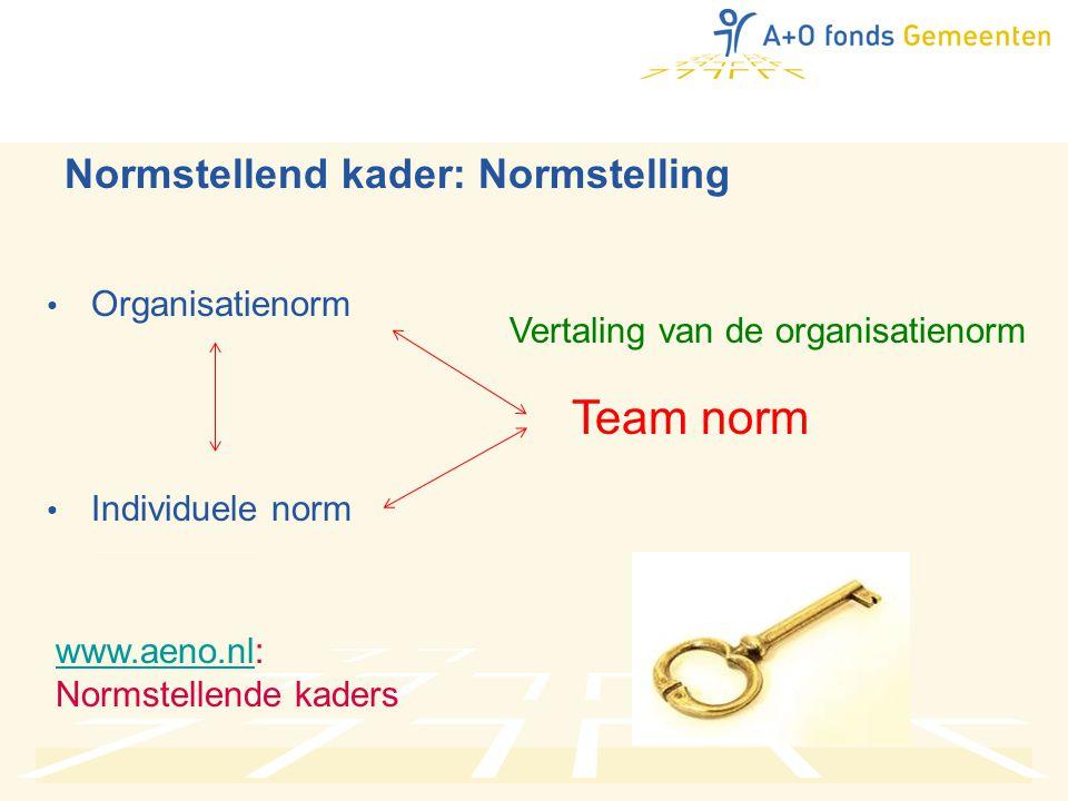 Normstellend kader: Normstelling