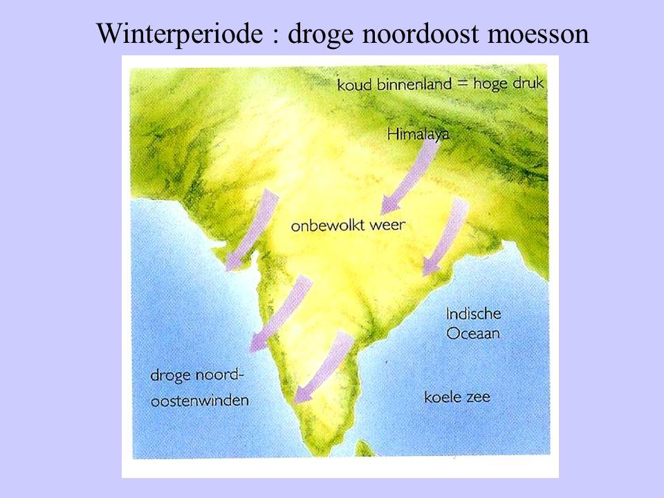 Winterperiode : droge noordoost moesson