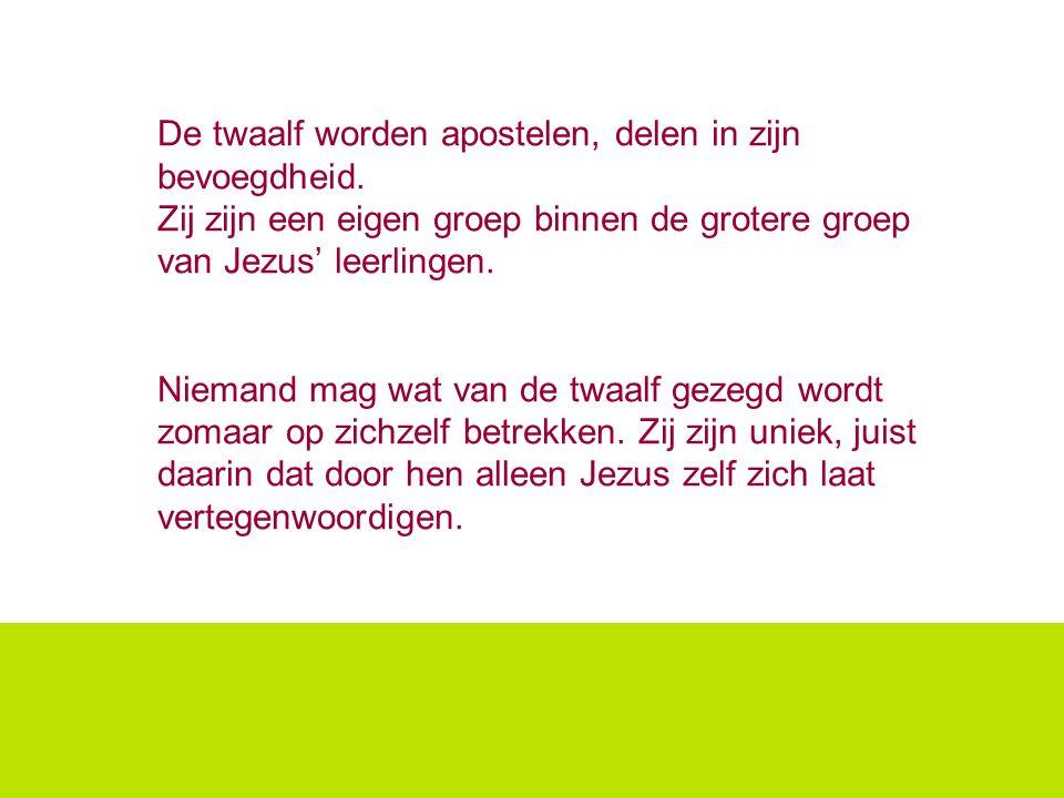 De twaalf worden apostelen, delen in zijn bevoegdheid.