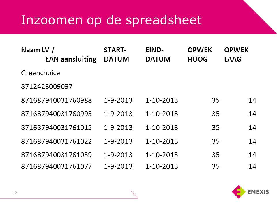 Inzoomen op de spreadsheet