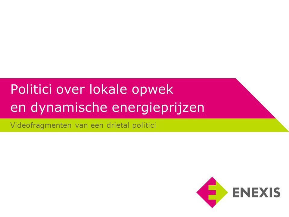 Politici over lokale opwek en dynamische energieprijzen
