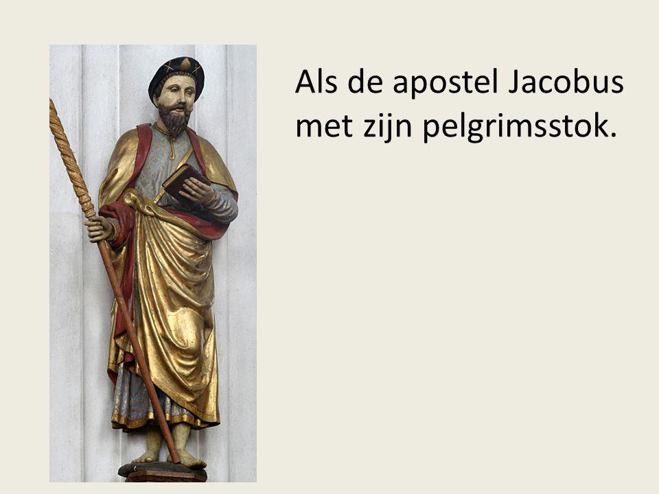 Als de apostel Jacobus met zijn pelgrimsstok.