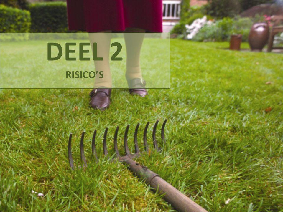 DEEL 2 RISICO'S