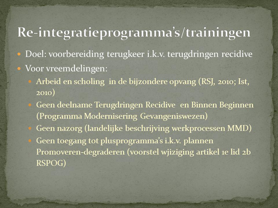 Re-integratieprogramma's/trainingen