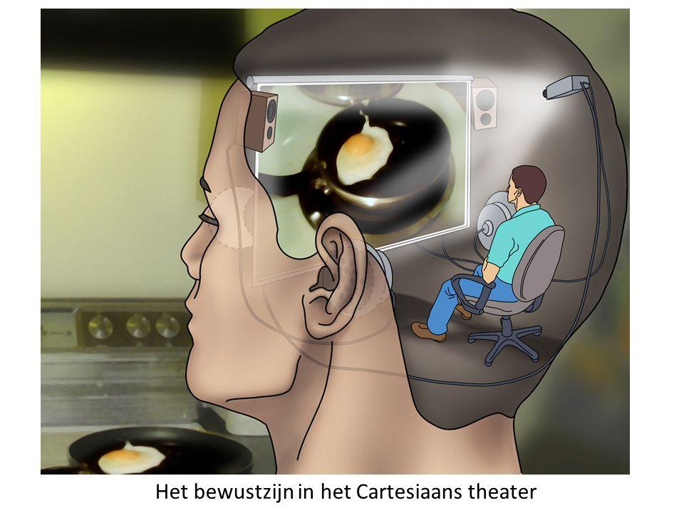 Het bewustzijn in het Cartesiaans theater