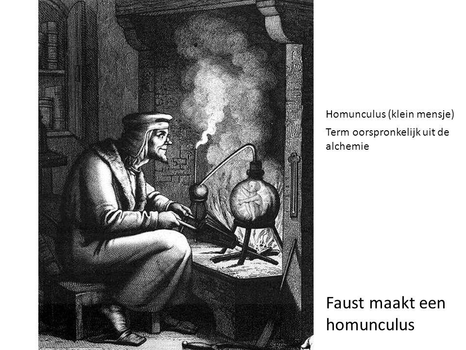 Faust maakt een homunculus