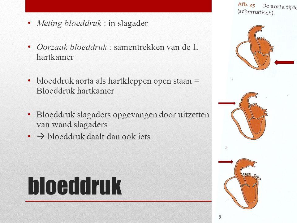 bloeddruk Meting bloeddruk : in slagader