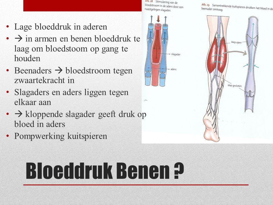 Bloeddruk Benen Lage bloeddruk in aderen