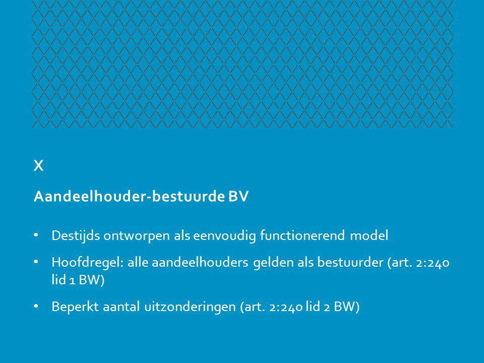 X Aandeelhouder-bestuurde BV