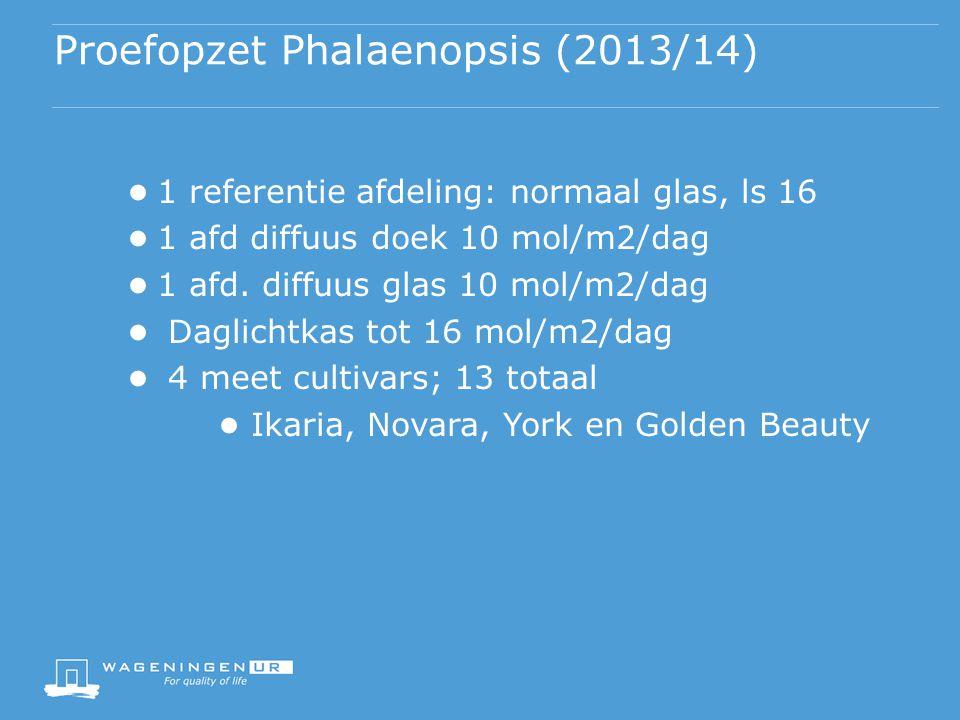 Proefopzet Phalaenopsis (2013/14)