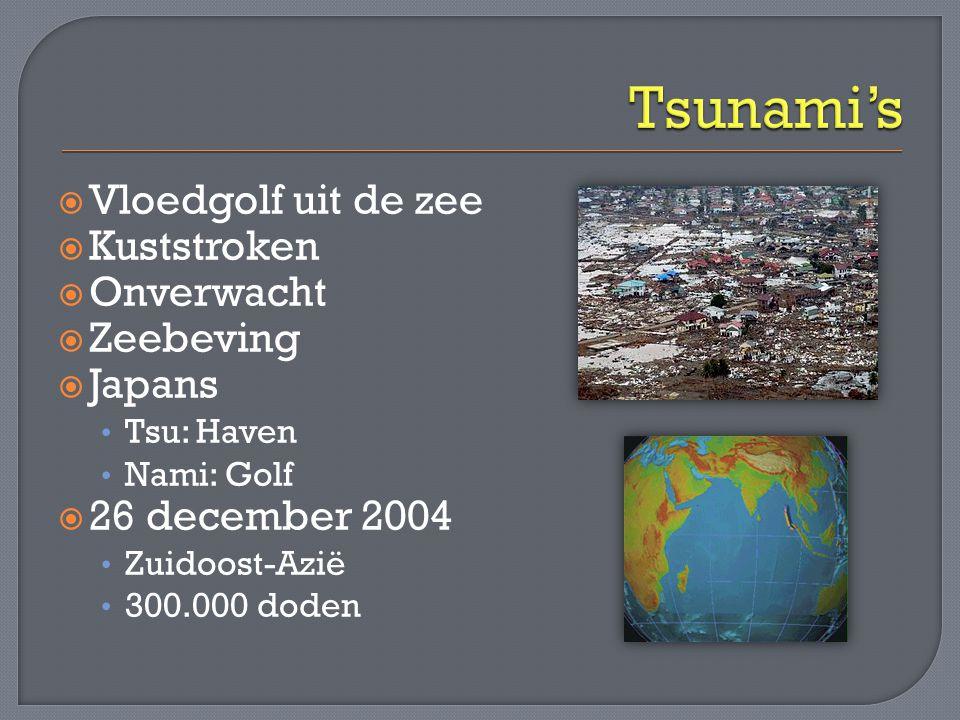 Tsunami's Vloedgolf uit de zee Kuststroken Onverwacht Zeebeving Japans