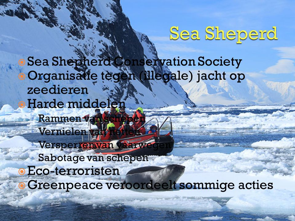 Sea Sheperd Sea Shepherd Conservation Society